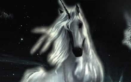 Shop unicorn status: denied