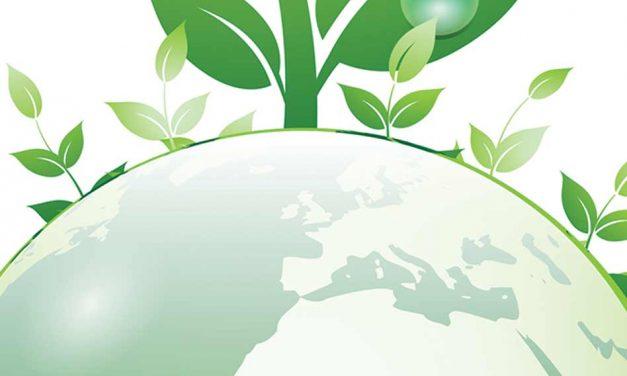 Backing waste reduction