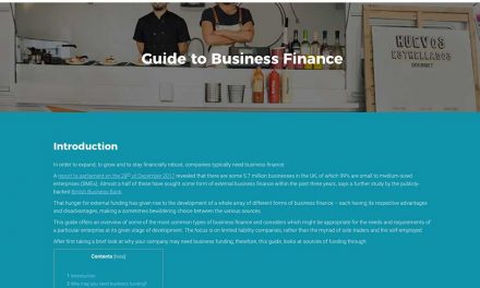 Free guide to business finance