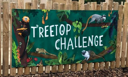 Soyang Europe produces eco-friendly signage for Chester Zoo
