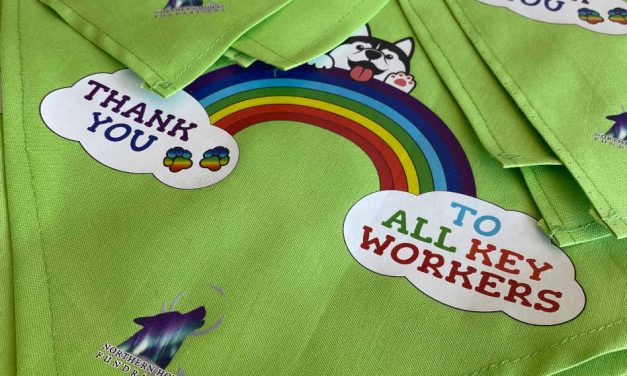 Thank you key workers: Peach Branding creates charity fundraising dog bandanas