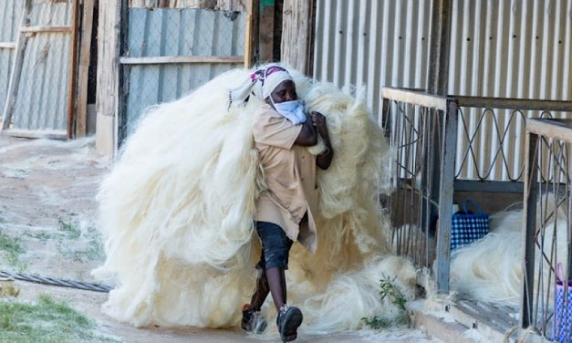 Proposals sought for sustainable clothing projects